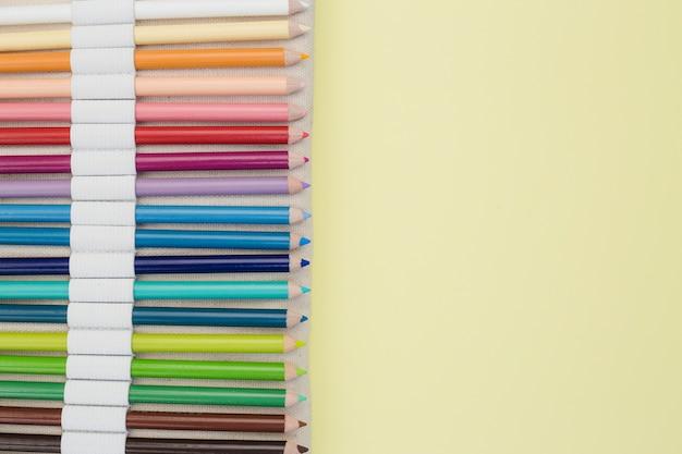 Concetto di artista incantevole con matite colorate