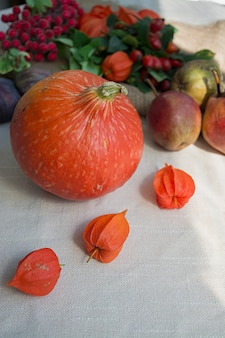 Concetto di autunno con frutta e verdura. zucca, fichi, foglie d'autunno.
