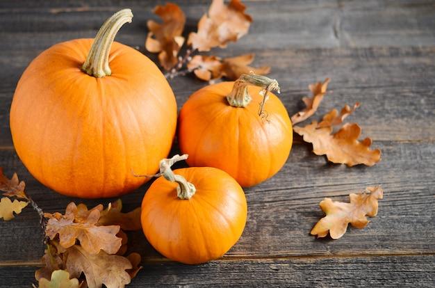 Concetto di autunno con le zucche su una tavola di legno rustica