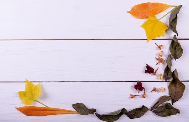 Concetto di autunno vista dall'alto. cornice fatta di fiori secchi, foglie secche
