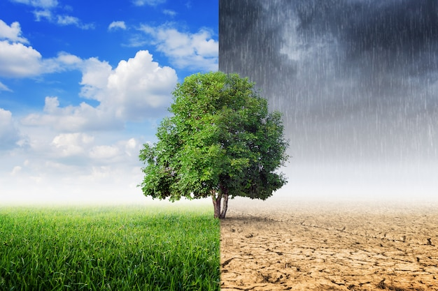 Concetto di cambiamento climatico