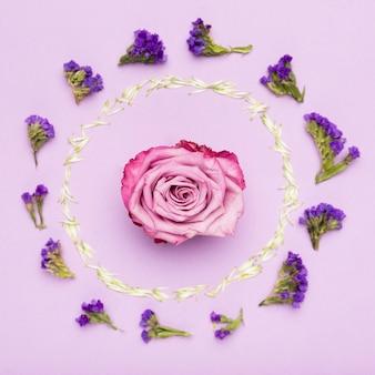 Concetto di cornice fiore colorato con petali