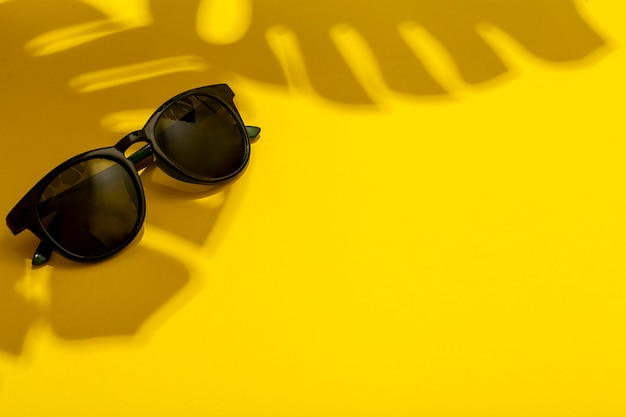 Concetto di estate e vacanze. occhiali da sole all'ombra di verità e piante tropicali su uno sfondo luminoso e pulito d'estate