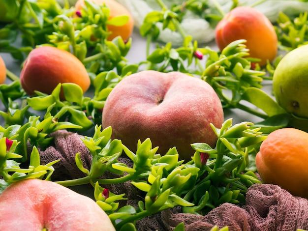 Concetto di frutta fresca estate still life - pesche, albicocche e pere