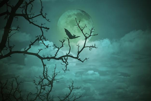 Concetto di halloween: foresta spettrale con luna piena e alberi morti, paesaggio horror scuro.