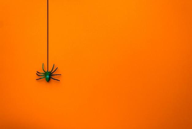 Concetto di halloween. il ragno scende sulla ragnatela.