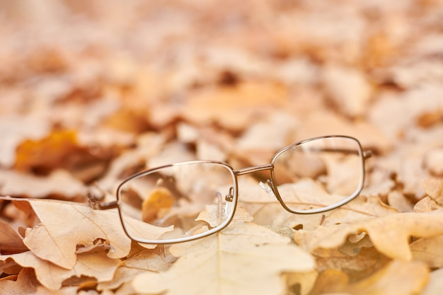 Concetto di perdita della vista autunnale