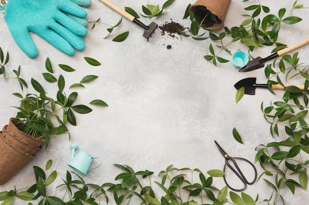Concetto di primavera giardinaggio con foglie verdi e strumenti. distesi.