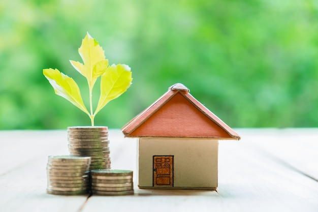 Concetto di risparmio di denaro per una casa. concetto di finanza e denaro di affari, risparmiare soldi per prepararsi in futuro. tre crescono sulla moneta