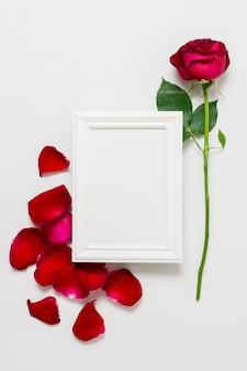 Concetto di rosa rossa con cornice bianca