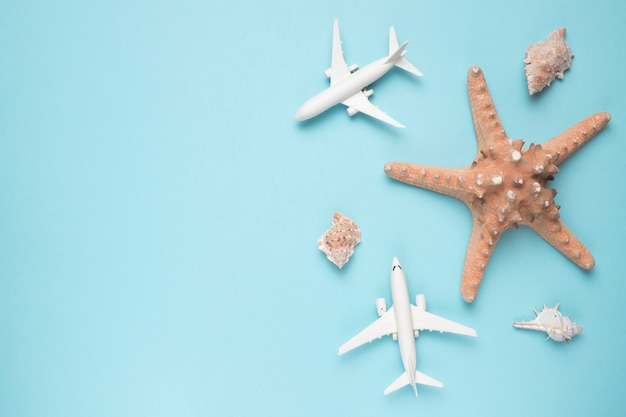 Concetto di vacanza con aerei e stelle marine