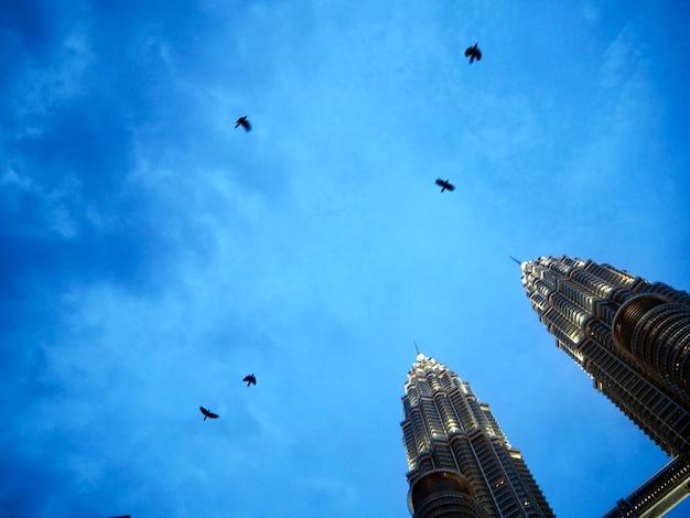 Concetto di vista del cielo della torre gemella del corvo