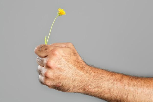 Concetto e contrasto della mano e del fiore pelosi dell'uomo