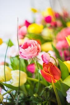 Concetto floreale di primavera