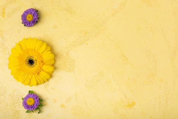 Concetto floreale minimalista con spazio di copia