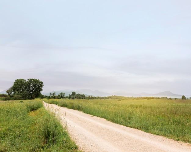 Concetto rurale con strada