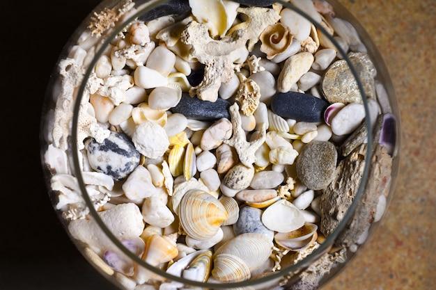 Conchiglie di mare, coralli, pietre in una bottiglia di vetro e bicchiere di vino