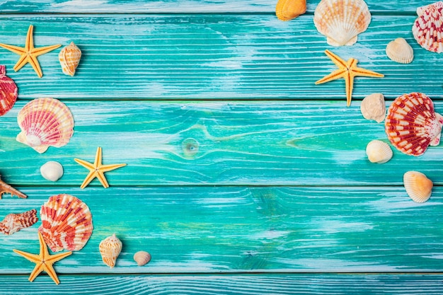 Conchiglie differenti sul fondo di legno di colore