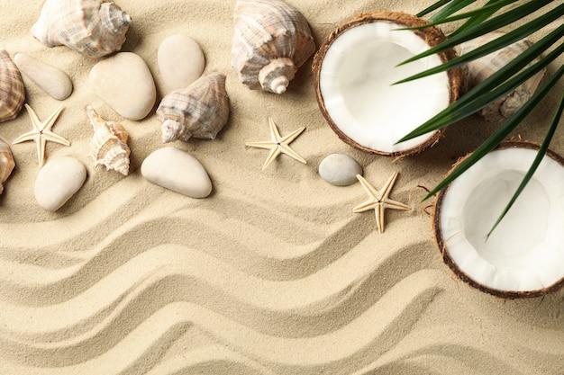 Conchiglie, pietre, stelle marine, cocco e ramo di palma sulla sabbia del mare, spazio per il testo