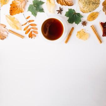 Condimento e foglie con tazza in disposizione