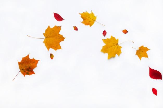 Confine autunno fatto di foglie di autunno su sfondo bianco. vista piana, vista dall'alto. copia spazio per promozioni e sconti stagionali.
