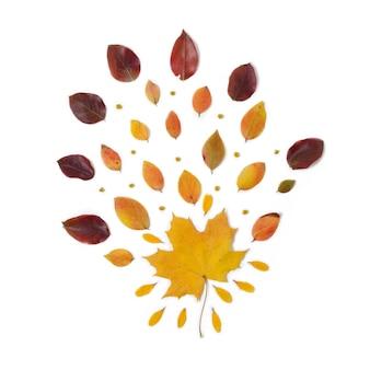 Confine d'autunno composizione delle foglie rosse e gialle vibranti su una priorità bassa bianca.