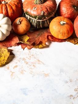 Confine delle zucche di varie dimensioni e colori e foglie di autunno asciutte differenti su un copyspace di marmo