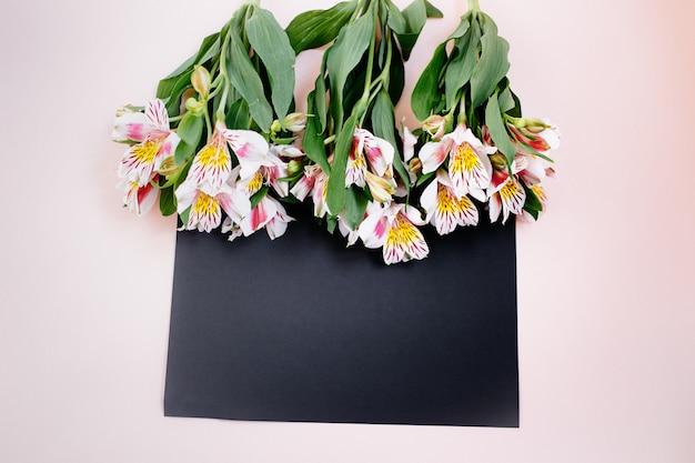 Confine di fiori alstroemeria