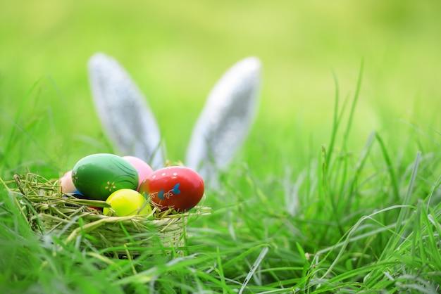 Coniglietto di pasqua ed uova di pasqua sul coniglio dell'orecchio dell'erba sul campo