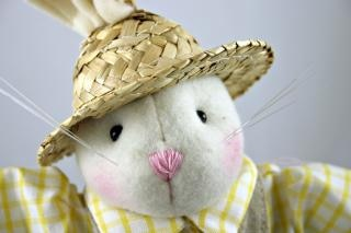 Coniglio di pasqua con un cappello