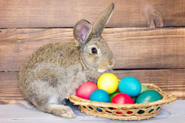 Coniglio grigio con un cesto di uova di pasqua sullo sfondo di tavole di legno, il concetto per la festa di pasqua