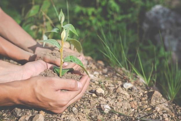 Conservazione ambientale in giardino per bambini.