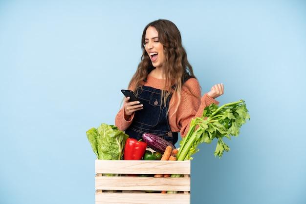 Contadino con verdure appena raccolte in una scatola con il telefono in posizione di vittoria