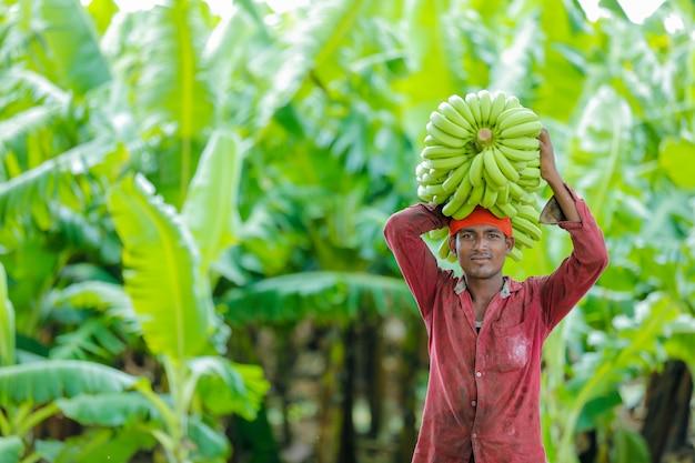 Contadino indiano al campo di banane
