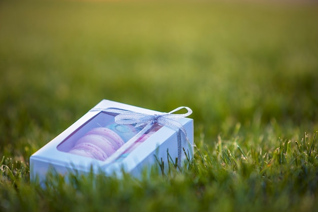 Contenitore di regalo bianco del cartone con i biscotti fatti a mano variopinti del macaron sul fondo del prato inglese dell'erba verde.