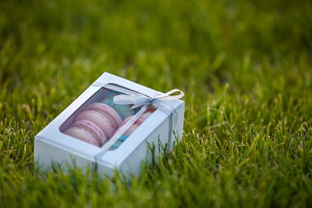 Contenitore di regalo bianco del cartone con i biscotti macaron fatti a mano variopinti sul prato inglese dell'erba verde.