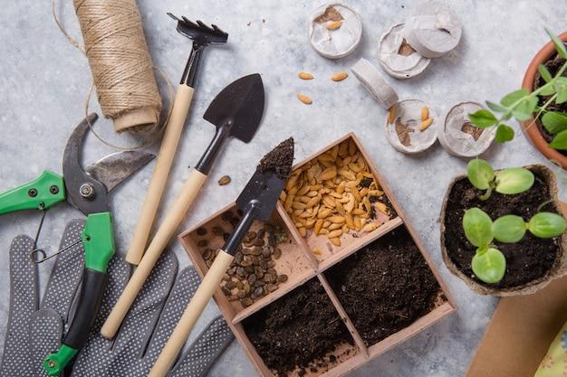 Contenitore di torba con terreno, piantando una pianta con attrezzi da giardinaggio.