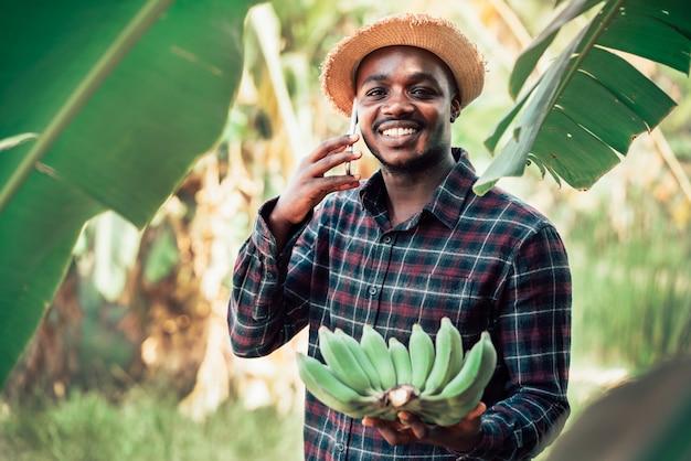 Conversazione africana dell'uomo dell'agricoltore sullo smartphone e sulla banana all'azienda agricola organica con il sorriso e felice concetto di coltivazione o di agricoltura