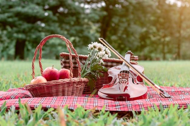 Coperta di picnic di frutta e violino in giardino.