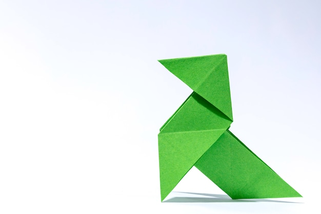 Copertina del libro con origami verde