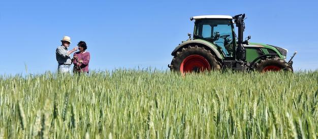 Coppia di agricoltori in un campo di grano con un trattore