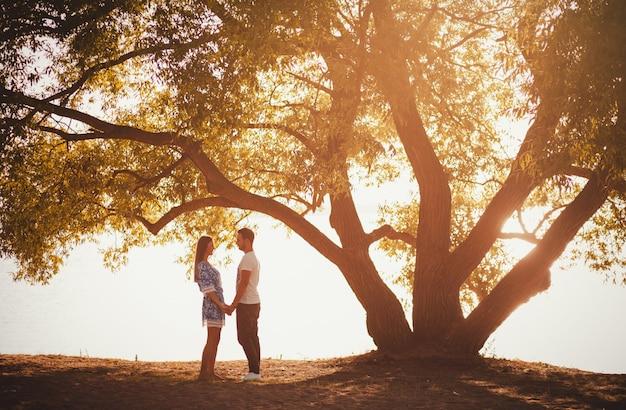 Coppia in piedi sotto un grande albero