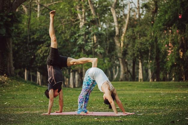 Coppia in posa professionale di yoga