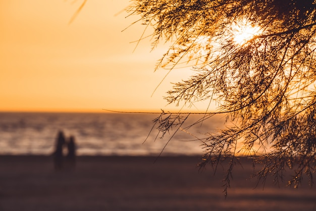 Coppia la camminata sulla spiaggia all'outfocus del tramonto