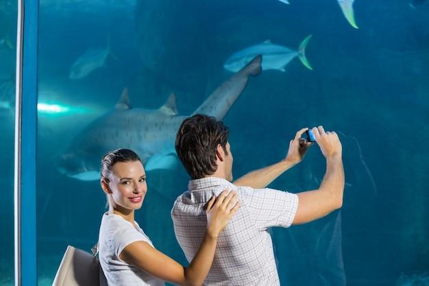 Coppia, presa, foto, di, squalo