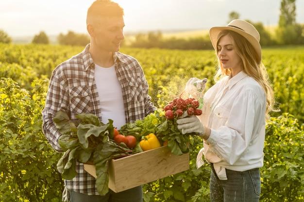 Coppia raccogliendo verdure