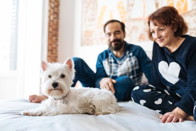 Coppia rilassata a casa a letto con il cane