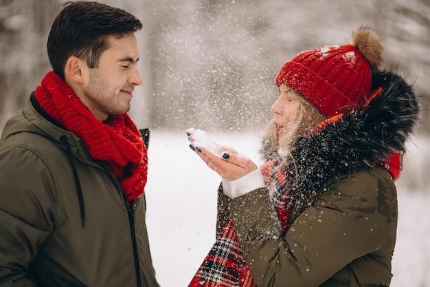 Coppie sul san valentino in un parco di inverno