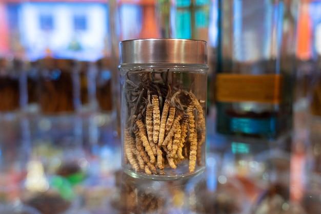 Cordyceps in una bottiglia di vetro