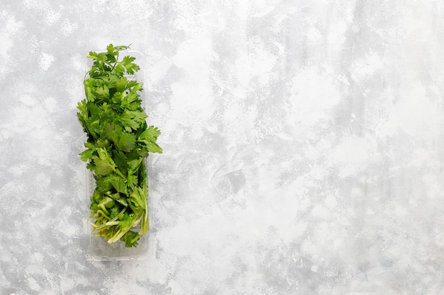 Coriandolo verde fresco in scatole di plastica su calcestruzzo grigio